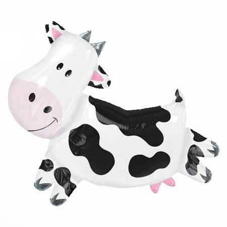 Farm 2nd Birthday Party Supplies (XL 28