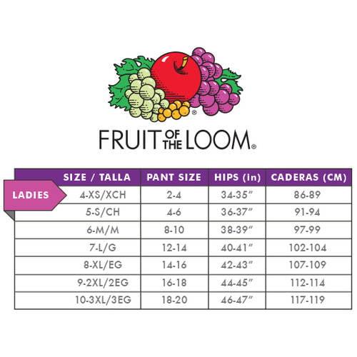 bebecc1da265c Fruit of the Loom - Women s Assorted Microfiber Hi-Cut