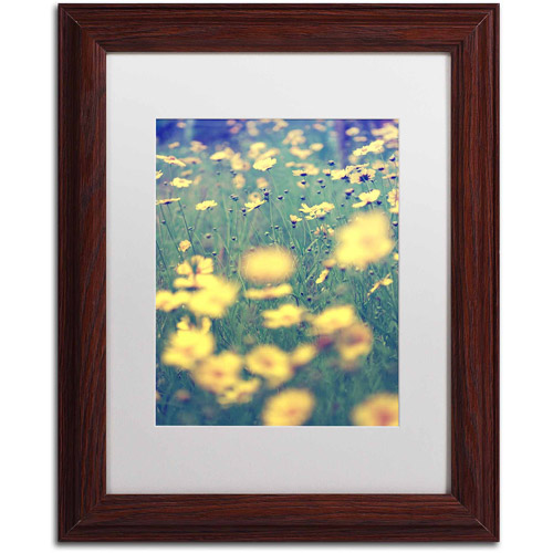 "Trademark Fine Art ""Field of Dreams"" Canvas Art by Beata Czyzowska Young, White Matte, Wood Frame"