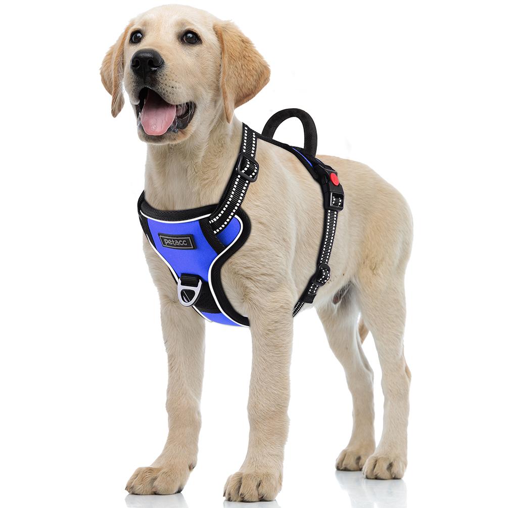 Petacc Dog Harness Adjustable Pet Harness Reflective Outdoor Pet Vest with  Sturde Handle for Walking Training, Blue, L - Walmart.com - Walmart.comWalmart.com