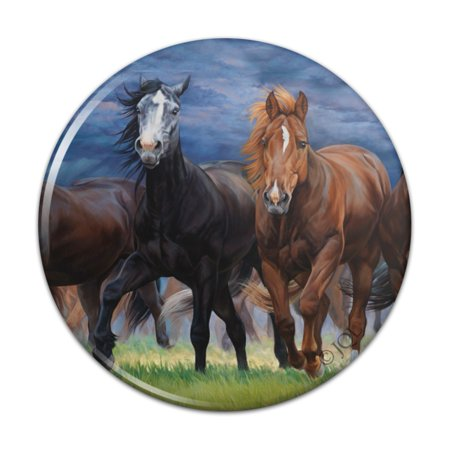 Horses Ahead of the Storm Front Pinback Button Pin