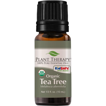 Plant Therapy Tea Tree Organic Essential Oil | 100% Pure, USDA Certified Organic, Undiluted, Natural Aromatherapy |