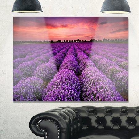 DESIGN ART Red Sunset Over Lavender Field - Extra Large Glossy Metal Wall Art Landscape ()