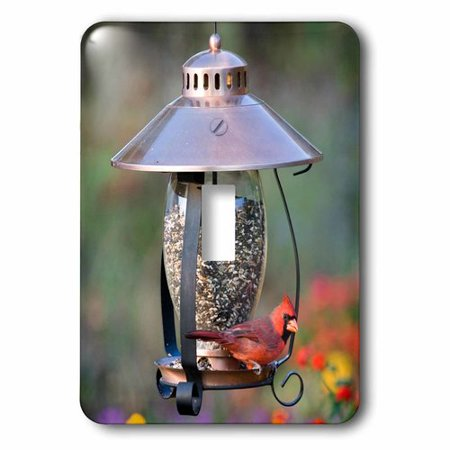 3dRose Northern Cardinal on copper lantern hopper bird feeder, Marion Co. IL, Single Toggle Switch