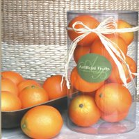 A and B Home 10 Piece Set of Decorative Oranges