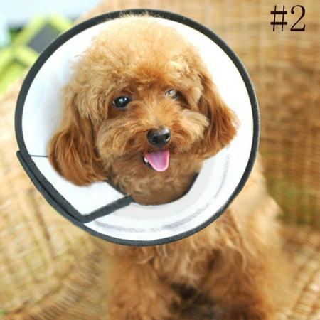 Elizabeth Protective Collar Wound Healing Cone Protection Smart Collar for Dog  Cat Pet 2  - Walmart.com f4ec656c7c300