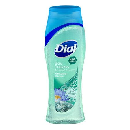 Dial Skin Therapy Exfoliating Body Wash Himalayan Salt  16 0 Fl Oz