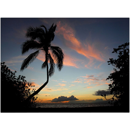 "Trademark Fine Art ""Tropical Sunset"" Canvas Art by Pierre Leclerc"