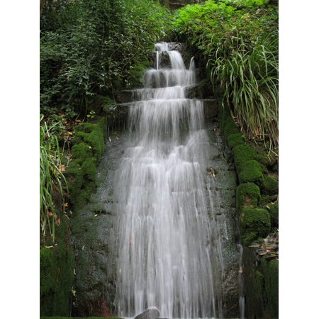 LAMINATED POSTER Waterfall Water Vegetation River Green Plants Poster Print 11 x 17 17 Phillip Rivers Light
