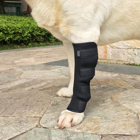 Dog Pet Compression Wrap Injury rear legs hock brace support hips joints Wrap