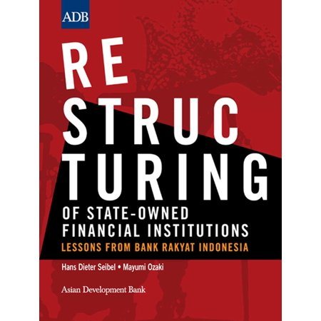 Restructuring of State-Owned Financial Institutions -