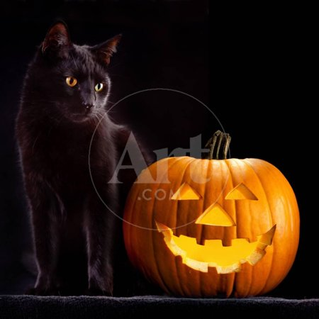 Halloween Superstitions Black Cats (Halloween Pumpkin and Black Cat Scary Spooky and Creepy Horror Holiday Superstition Evil Animal And Print Wall Art By)