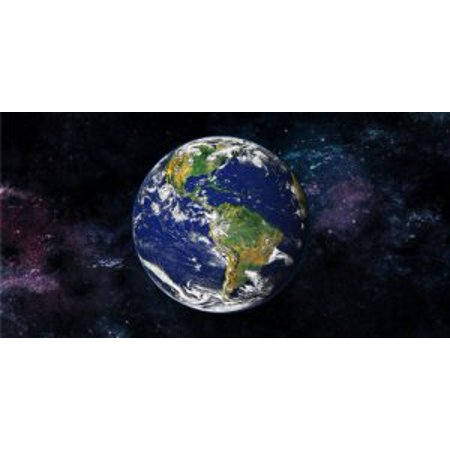 Little Earth License Plate Purse (Earth Photo License Plate)