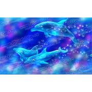 Wallhogs Dolphins Poster Wall Mural