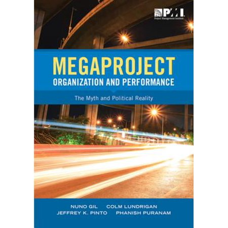 Megaproject Organization and Performance - eBook