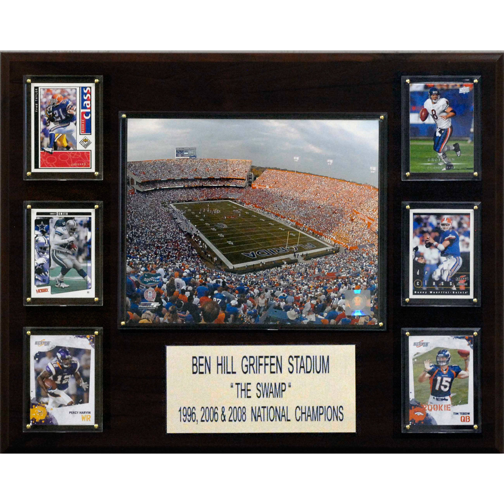 C&I Collectables NCAA Football 16x20 Ben Hill Griffin Stadium Stadium Plaque