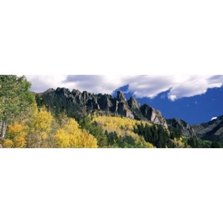 Forest on a mountain Jackson Guard Station Ridgway Colorado USA Canvas Art - Panoramic Images (18 x 6)