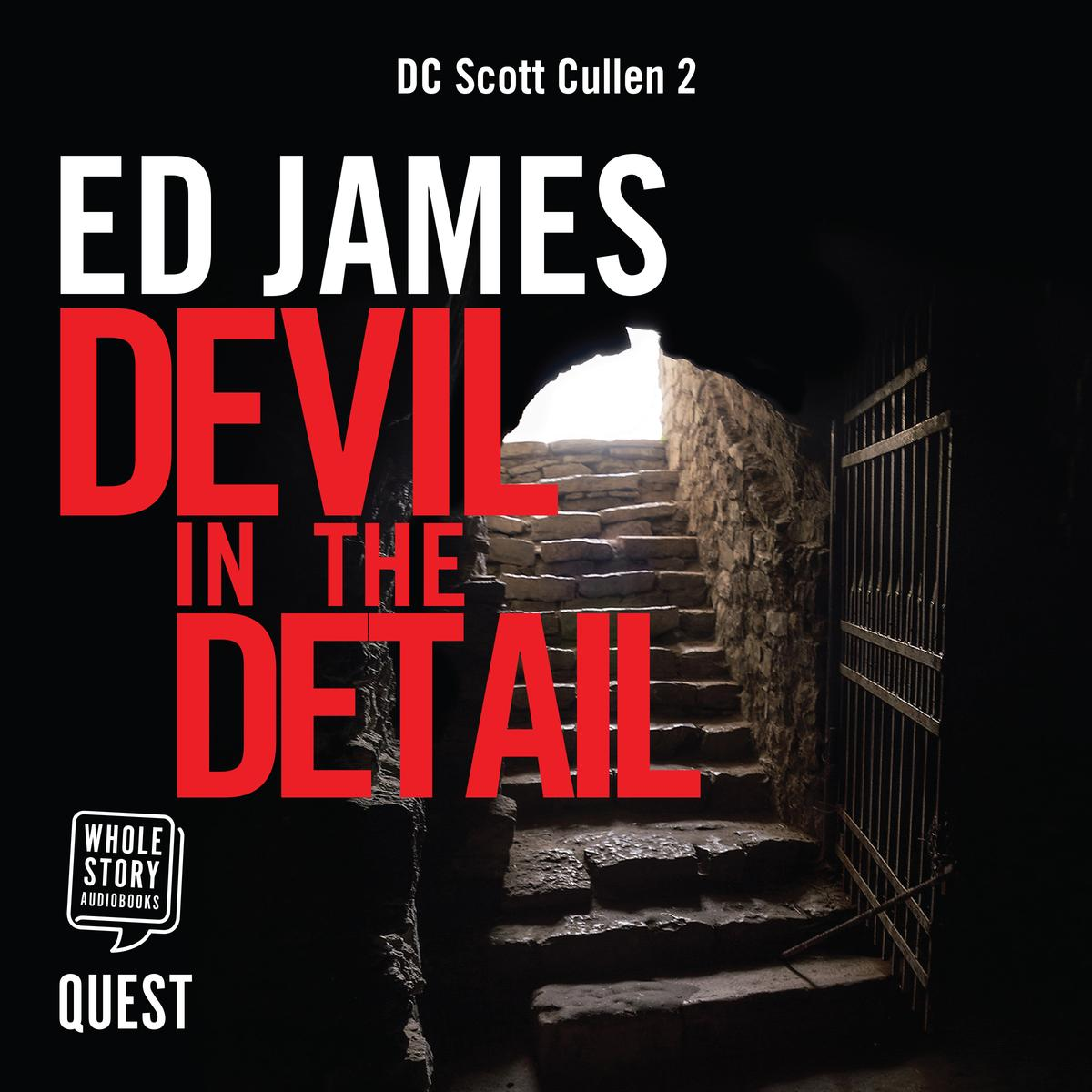 Devil in the Detail - Audiobook