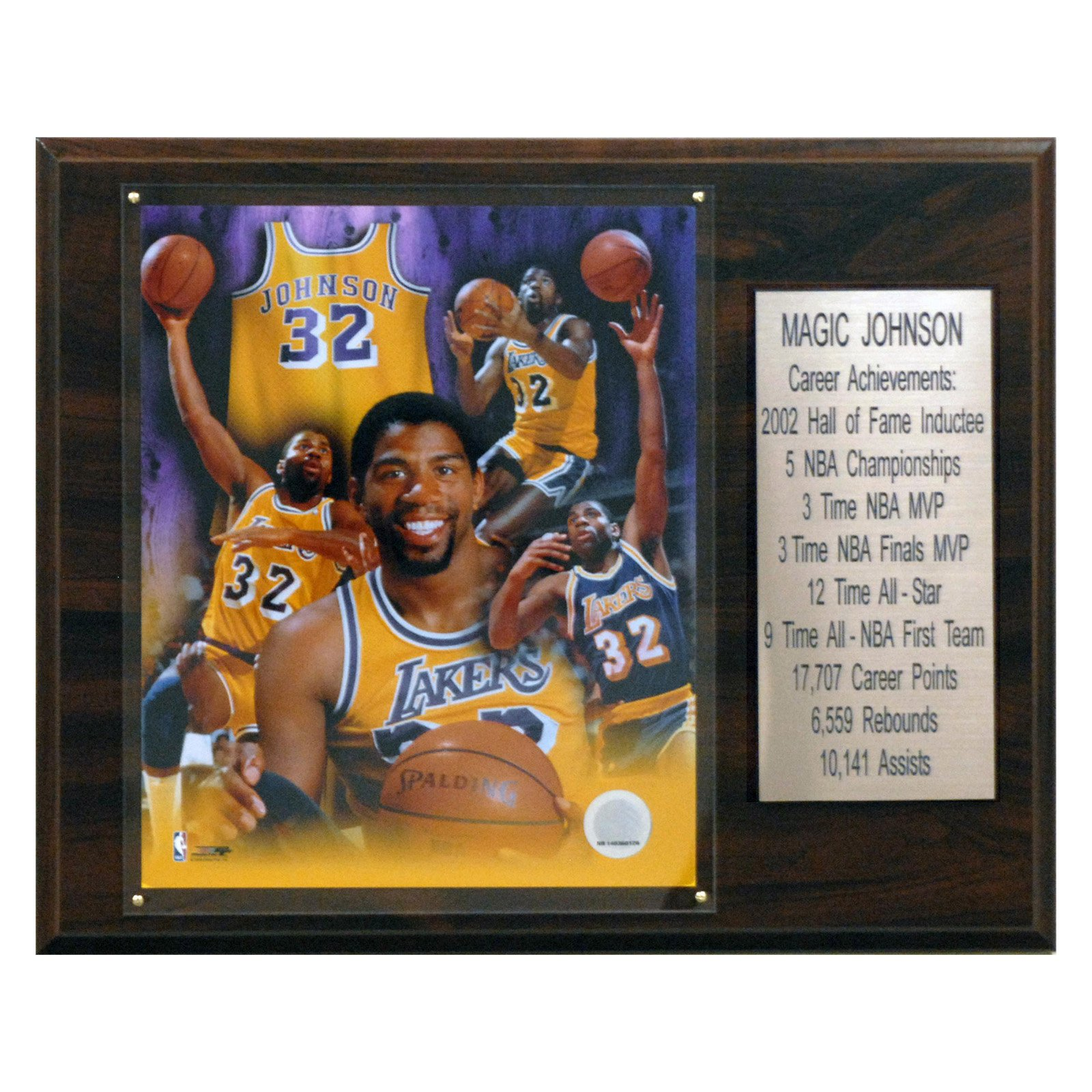 C&I Collectables NBA 12x15 Magic Johnson Los Angeles Lakers Career Stat Plaque