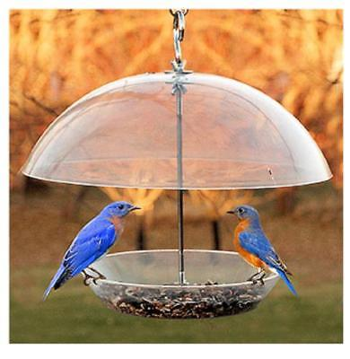 "Audubon 11.75"" Dome Top Seed and Bluebird Bird Feeder Attract Bluebirds Only One"