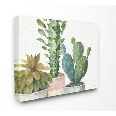 Stupell Home Decor Modern Succulents Pattern Stretched Canvas Wall Art, 30X40
