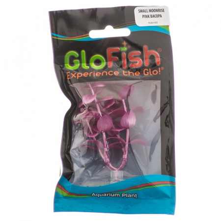 GloFish 19262 Bacopa Plant, Small, Pink Multi-Colored