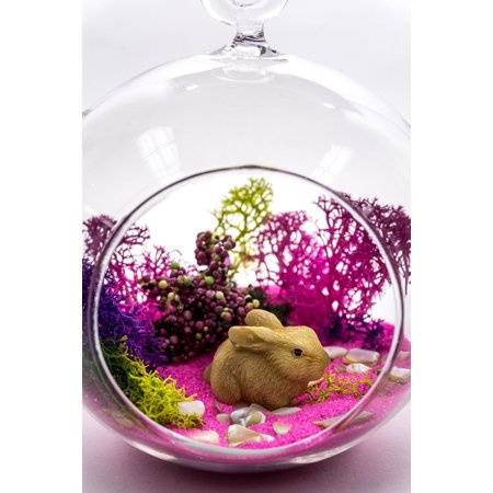 "Terrarium Kit | Bunny Lovers Wildlife Series | Complete Terrarium Gift Set | 4"" Glass Globe Terrarium Container 