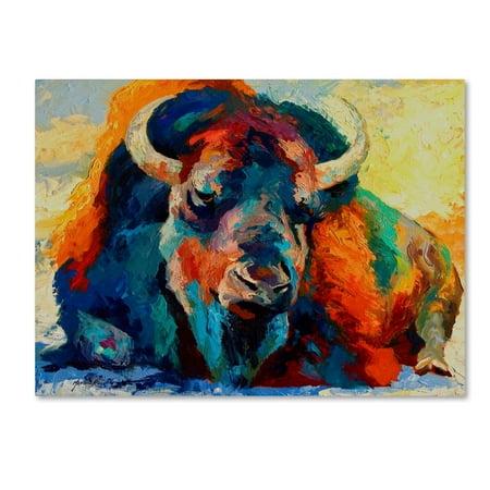 Trademark Fine Art 'Winter Bison' Canvas Art by Marion Rose ()