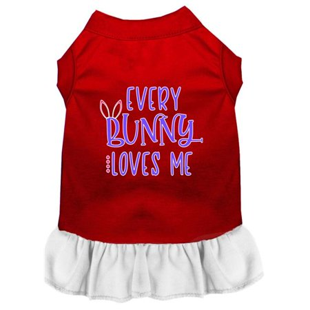 Every Bunny Loves me Screen Print Dog Dress Red with White Lg (Love Dog Dress)