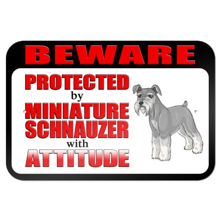 Schnauzer Miniature (Beware Protected by Miniature Schnauzer with Attitude 9