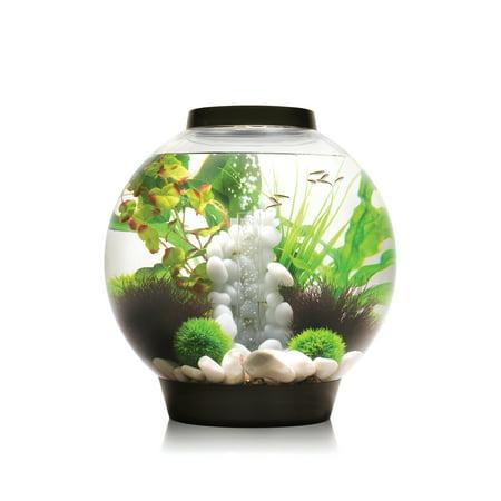 biOrb Classic Black LED Aquarium, 30 Liter (30 Fish Tank Aquarium)