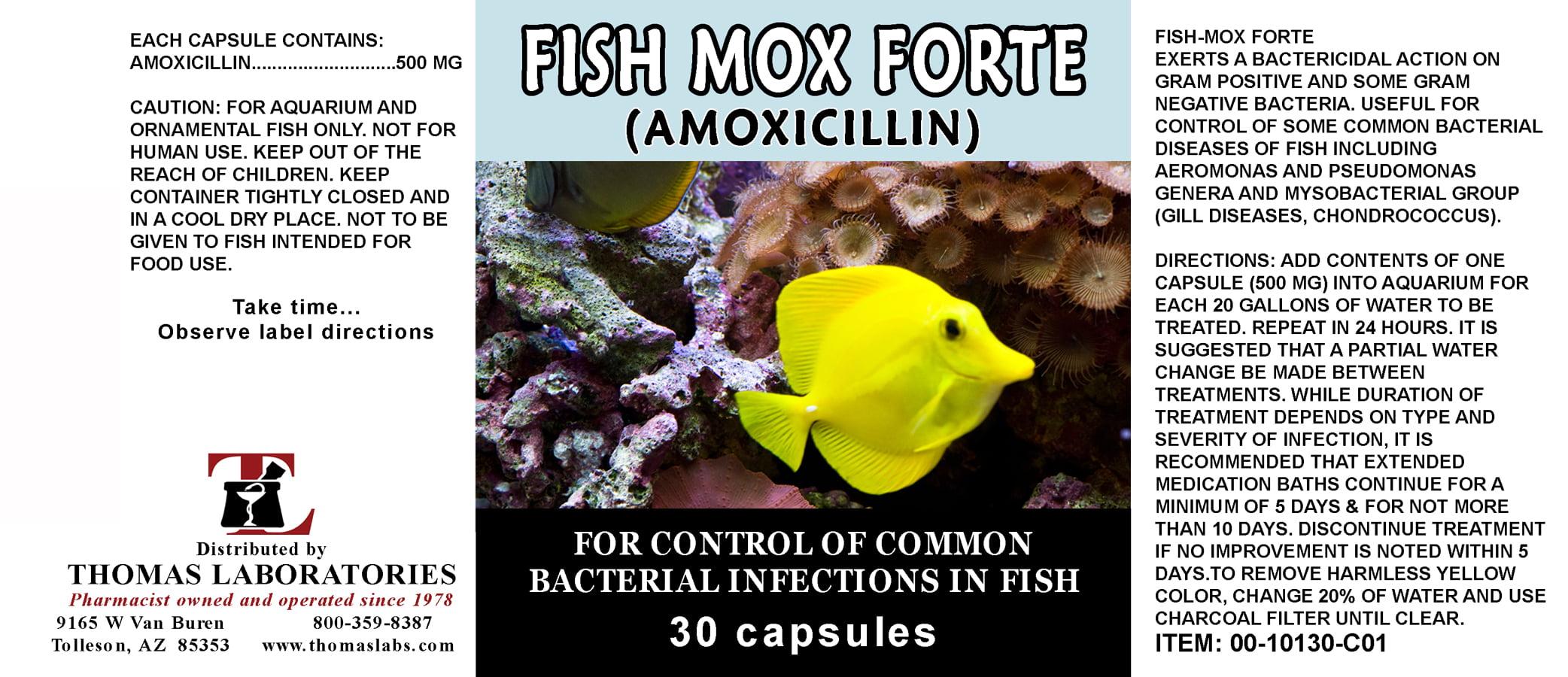 Fish tank antibiotics - Fish Tank Antibiotics