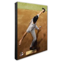 Justin Verlander Houston Astros 16'' x 20'' Close-up Player Profile Canvas - No Size
