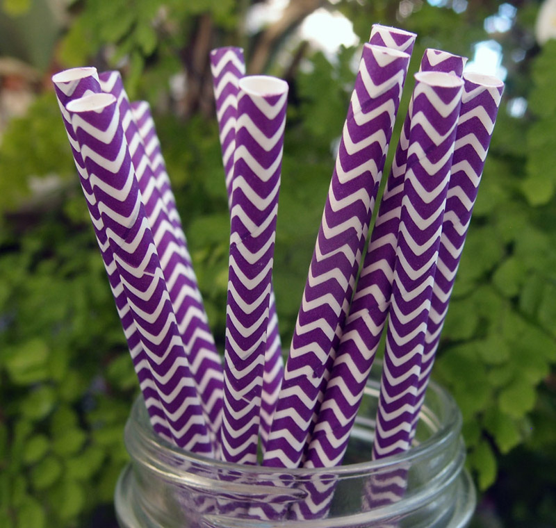 Quasimoon Dark Purple Chevron Patterned Party Paper Straws (12 Pack) by PaperLanternStore