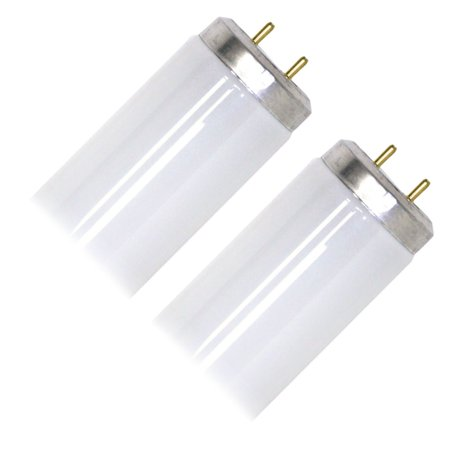 cw rp 2pk cp straight t12 fluorescent tube light bulb. Black Bedroom Furniture Sets. Home Design Ideas