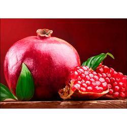 Pomegranate - Collection D'Art Diamond Embroidery/Printed/Gem Kit 27X38cm