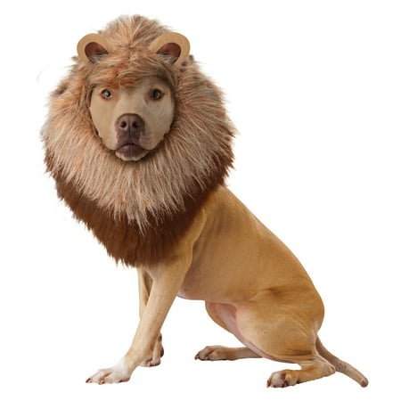 Lion Mane XSmall Dog Costume Halloween Headpiece Hat Animal Planet](Planet Halloween)