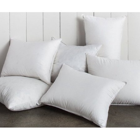 Set Of 2 20 X 95 Feather 5 Down Pillow Insert 220