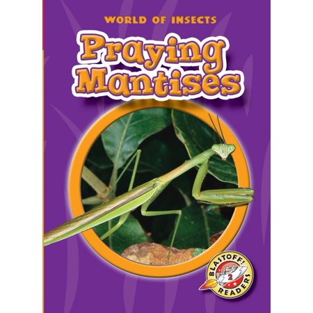Praying Mantises : `` (Praying Mantis Kit)