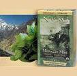 Moroccan Mint - Simply Mint Tea Numi Teas 18 Bag