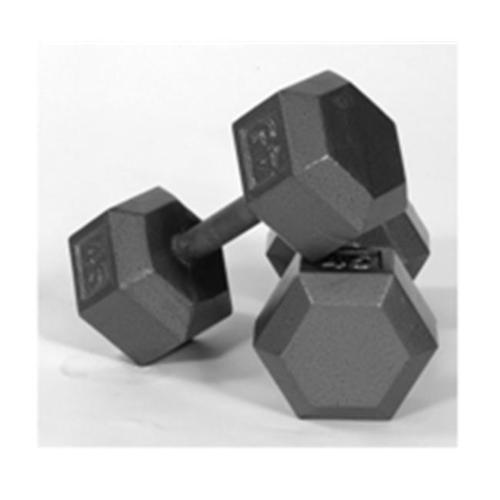USA Sports by Troy Barbell IHD-040 Solid Hex Dumbbell - 40 Pounds - Sold as a single dumbbell