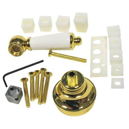 Danco Polished Brass/Porcelain Universal  Lever Handle