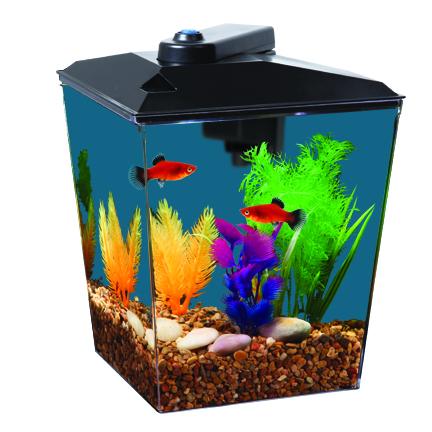 "Aqua Culture 1-Gallon Aquarium Kit, LED Lighting and Internal Power Filter, 7.5""L x 7.5""W x 10.25""H"