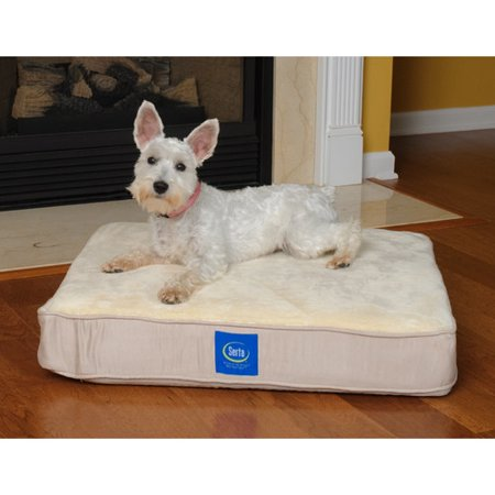 Serta Pet Beds True Response Dog Pillow with Memory Foam