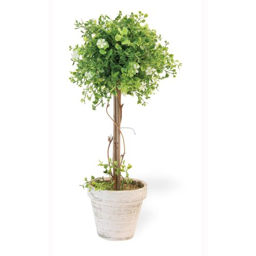 Charlton Home Flower Ivy Topiary in Pot