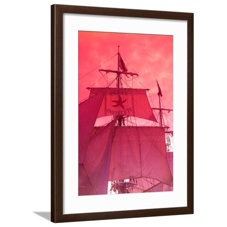 Low Angle View of Tall Ship in the Pacific Ocean, Dana Point Harbor, Dana Point, Orange County, CA Framed Print Wall Art - Halloween Stores Orange County Ca