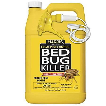 Spray Bed Bug Killer Istrebeleniya for Bedbugs and Lice by