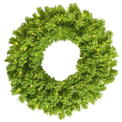 The Holiday Aisle Flocked Fir Wreath