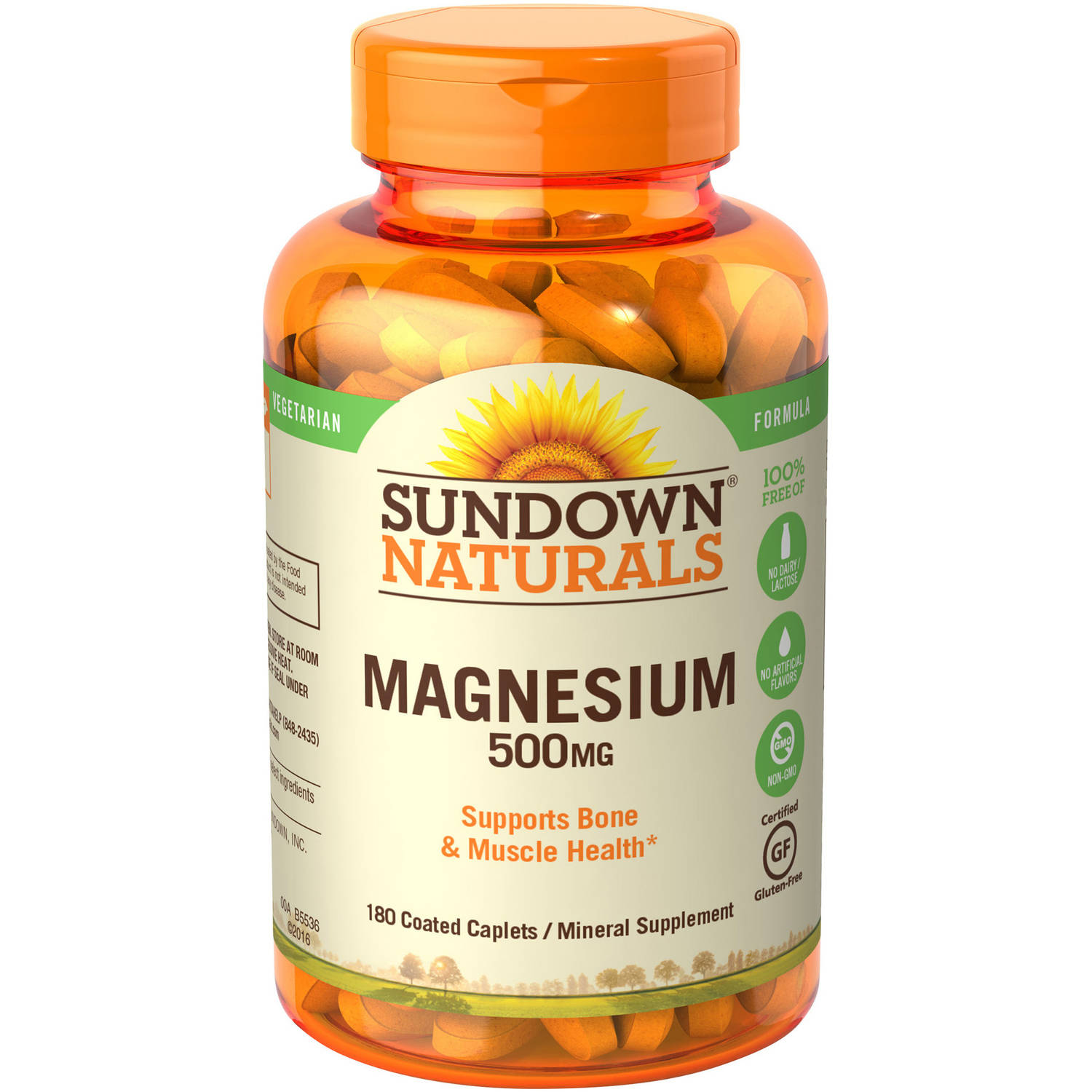 Sundown Naturals Magnesium Mineral Supplement Caplets, 500mg, 180 count