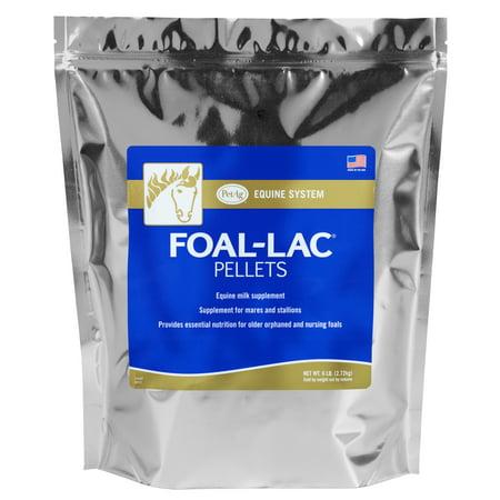 PetAg Foal-Lac Pellets Equine Milk Supplement, 6 lbs.